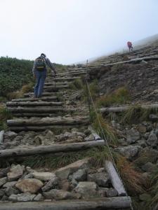 コレを登れば山頂です