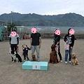 106869870_thumbnail.jpg