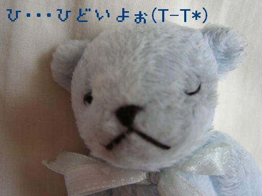 PHOTO240.jpg