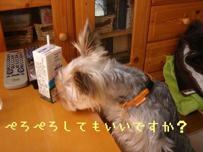 PHOTO249.jpg
