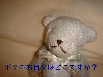 PHOTO251.jpg