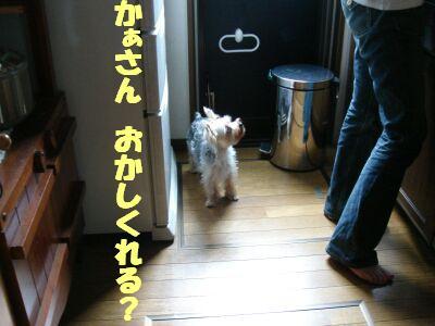 PHOTO414.jpg