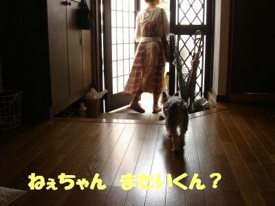 PHOTO419.jpg