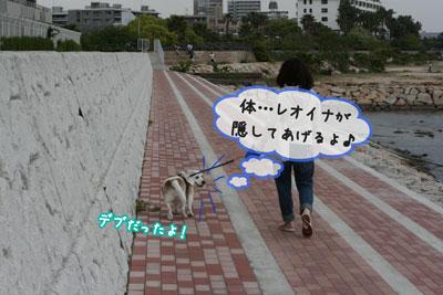 11_20090503203728.jpg