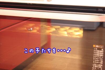 12_20090428205842.jpg