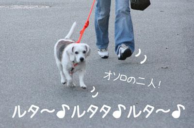 15_20081028195658.jpg
