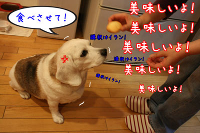 18_20090523151018.jpg