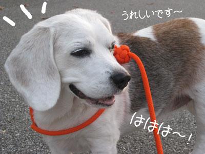 19_20081019210643.jpg
