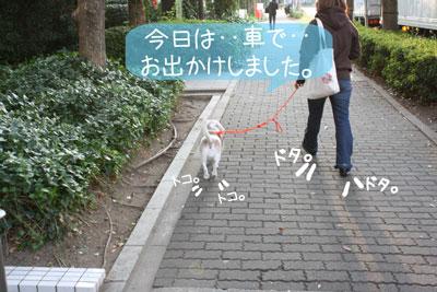 1_20081113211540.jpg