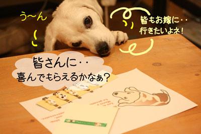 1_20081211205705.jpg