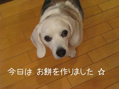 1_20081230182121.jpg