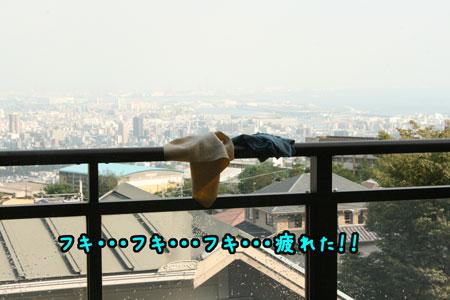 1_20090816214505.jpg