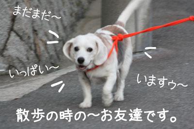 20_20081029120808.jpg