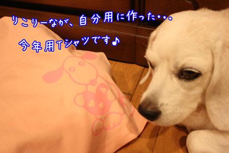 25_20090621202133.jpg