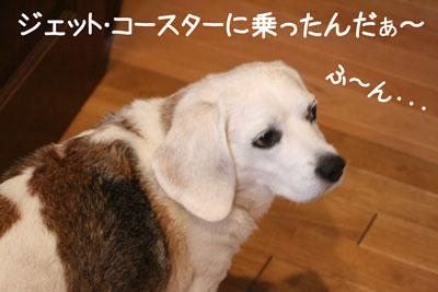 2_20081026140640.jpg