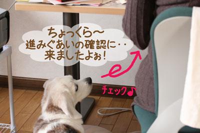 2_20081207225233.jpg