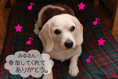 2_20081222121346.jpg
