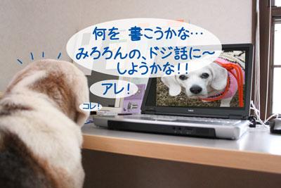 2_20090211165912.jpg