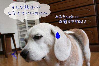 2_20090606171116.jpg