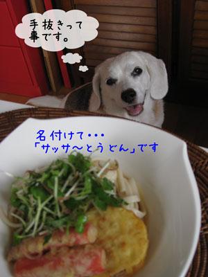 2_20090729134114.jpg