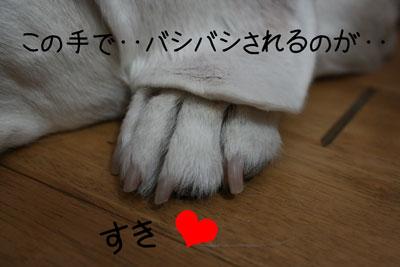 3_20081025132107.jpg