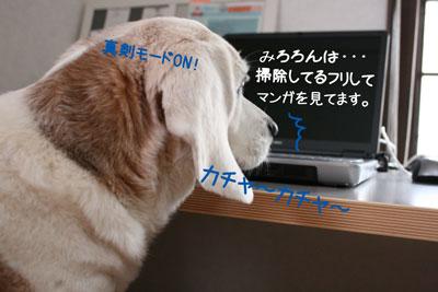 3_20090211165919.jpg