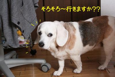 3_20090226145015.jpg