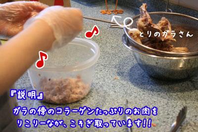 3_20090427150449.jpg