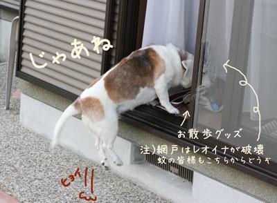 3_20090501203232.jpg