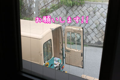 3_20090711135730.jpg