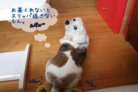 3_20090805211048.jpg