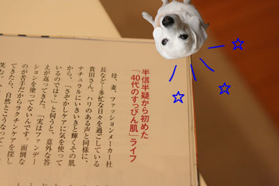 4_20090414201414.jpg