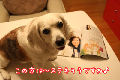 5_20090414201424.jpg