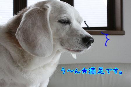 5_20090708135953.jpg