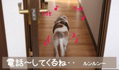 7_20081227120757.jpg