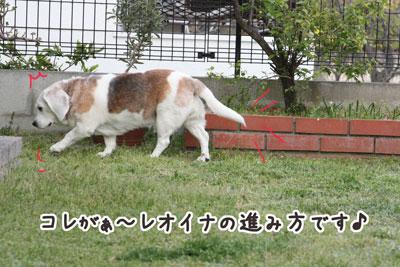 7_20090419221032.jpg