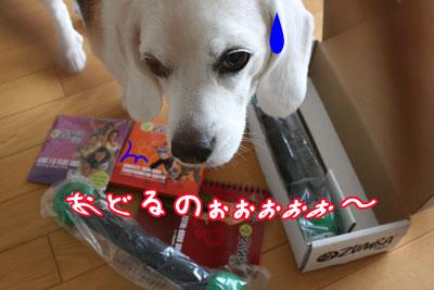 7_20090607195017.jpg