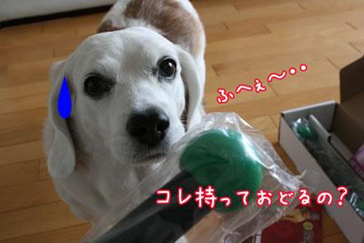 8_20090607195017.jpg