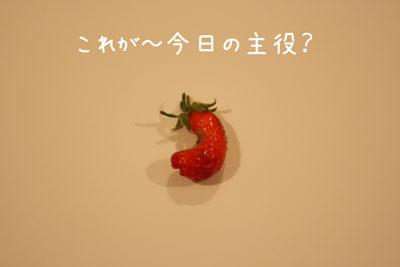9_20090412140214.jpg