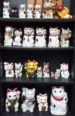 招き猫20081103
