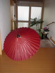からかさ20081206