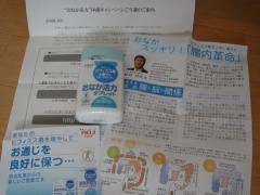 DSC04034_convert_20090408195210.jpg