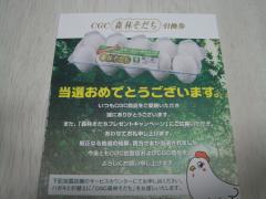DSC04075_convert_20090501190254.jpg