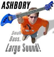 DeArmond ASHBORY BASS