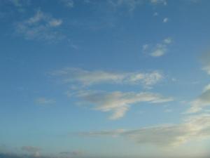 つがい鳥雲