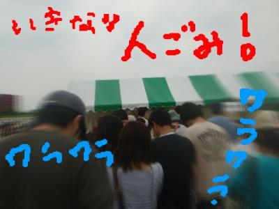DSC02395.jpg