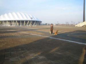 20081221-7.jpg