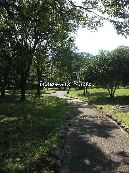 DSCF10・12公園2