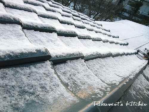 DSCF12・19雪