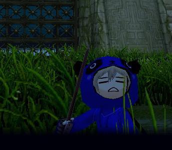 mabinogi_2008_01_12_018ふぇいす